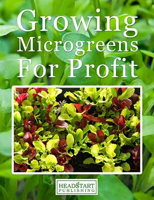 Microgreen book Growing Microgreens for Profit: A book review